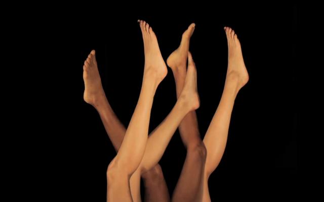 Imagens captadas no contexto de criação do espetáculo Philodendrus, de Cristina Moura
